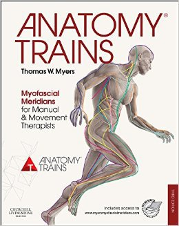 Anatomy Trains összefoglaló 3
